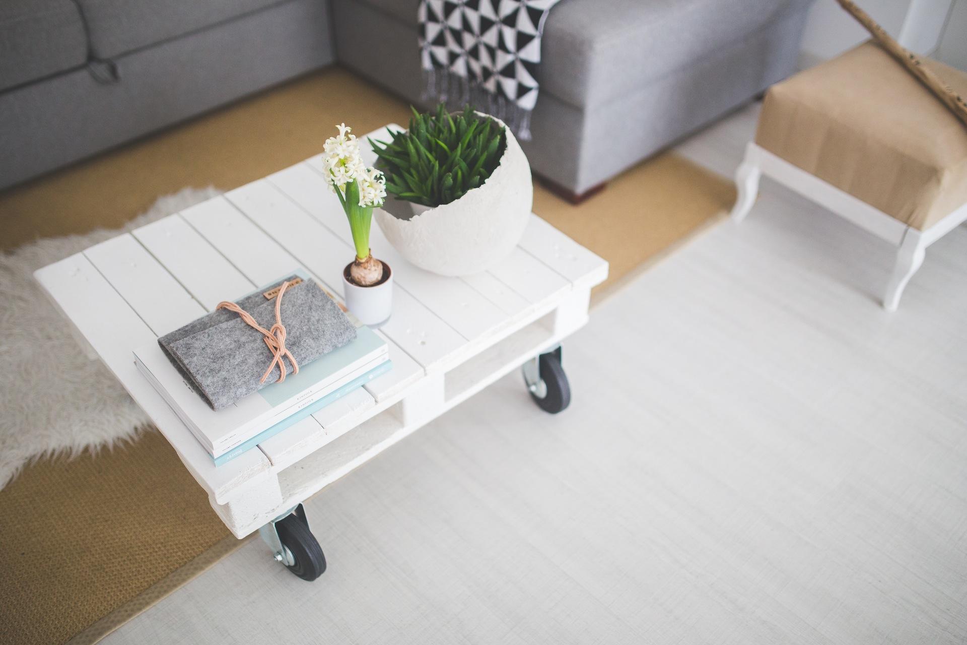 apartment-unique-succulents-plants-small-items
